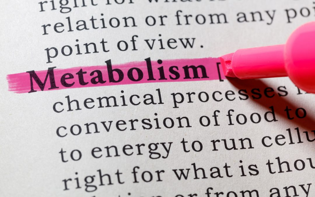 Understand Metabolism and how to get it working for you